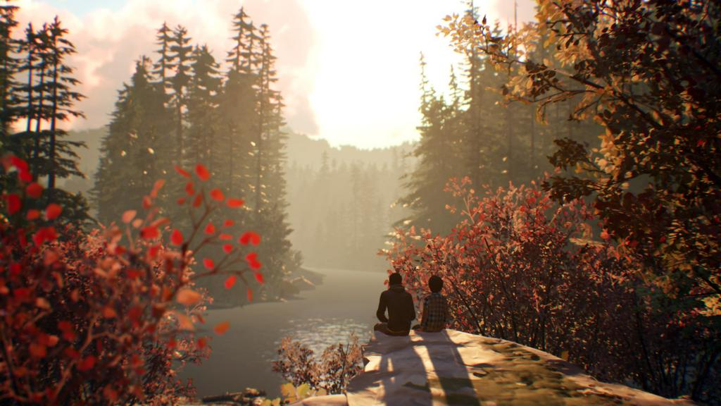 Player Research Life is strange 2 case study image